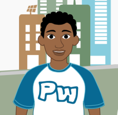 PW-meio-ambiente-2013-perfil