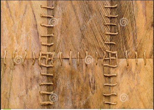 fibra-da-palmeira